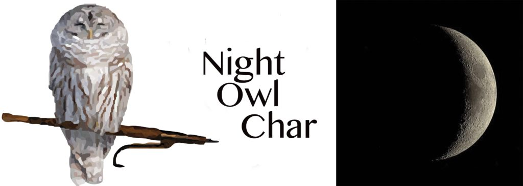 Night Owl Char